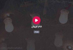 تله فیلم شام غریبان در فرهنگسرای هنر شاهین شهر