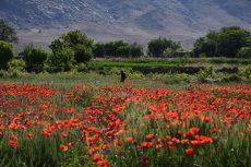حسن رباط روستایی زیبا برای گردشگران